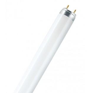 Лампа люминесцентная OSRAM LUMILUX DE LUXE T8 - 36W/940 2900lm G13 4000K - 4050300011301