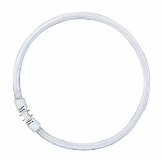 Лампа люминесцентная кольцевая OSRAM LUMILUX T5 FC - 40W/830 3400lm 2GХ13 3000K - 4050300528540