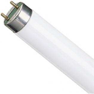 Лампа люминесцентная TLD18W/830 G13 T8 18Вт (улучшенная цветопередача) PHILIPS - 927920083055