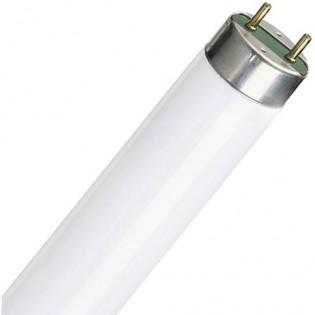 Лампа люминесцентная G13 T8 15Вт 6400K E.NEXT