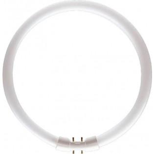 Кольцевая люминесцентная лампа FC40W/T5/840 Tungsram