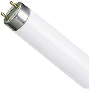 Лампа люминесцентная NATURA L 58W/76 G13 T8 Osram 4050300010533