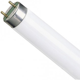 Лампа люминесцентная G13 T8 36Вт 54 General Electric